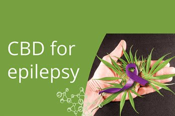 Cannabis Oil for Epilepsy