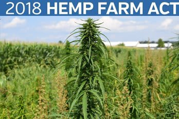 Hemp Farm Act