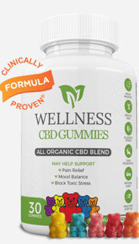 Wellness CBD Gummies